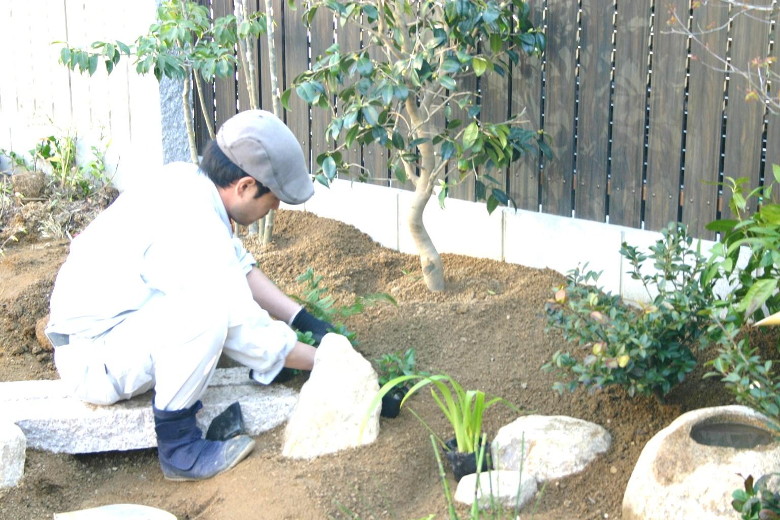 下草低木植栽