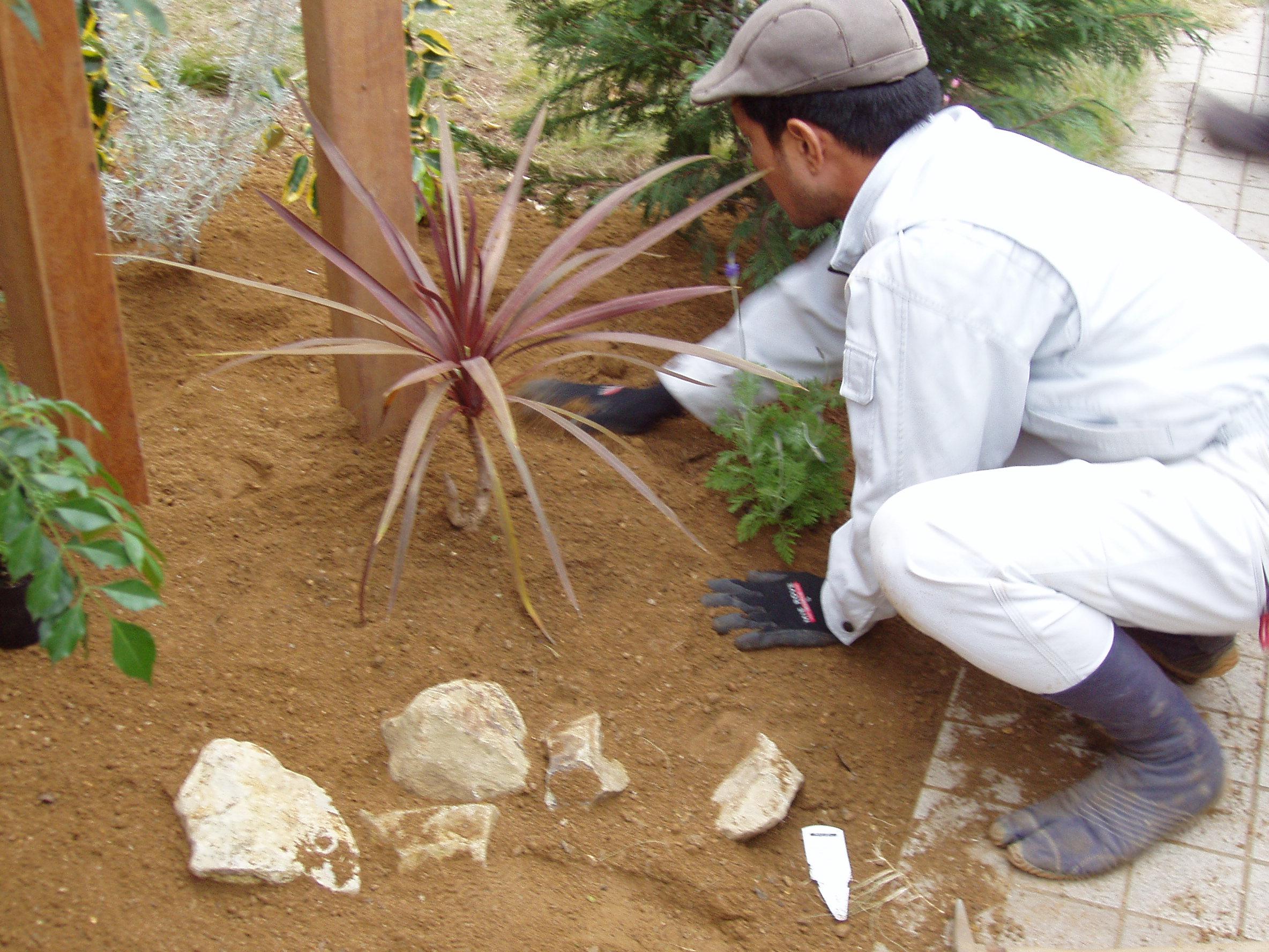 10.低木植栽